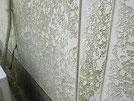 外壁に付着したカビ
