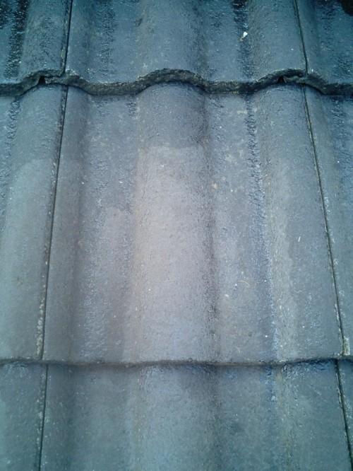 屋根:シーラー塗装1回目